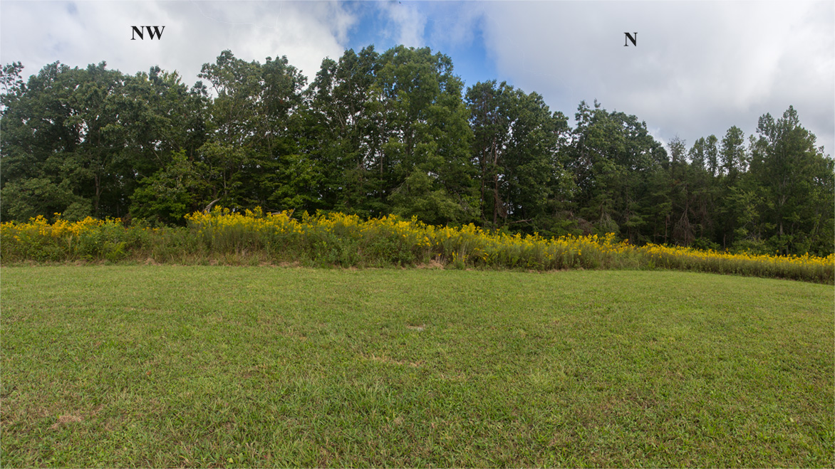 Pickett Pogue State Park And Natural Area Jamestown Tennessee